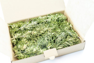 High Grade Premium Hemp CBD Flower Buds UK
