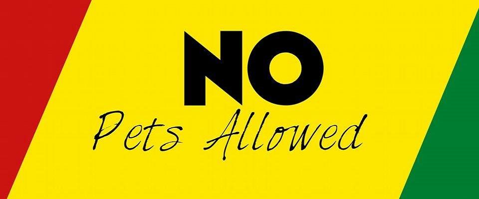 Club Jamaica No pets allowed