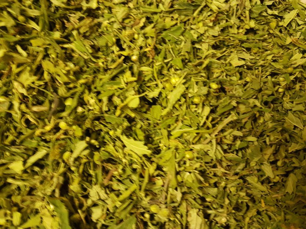 FInola Premium Tea
