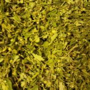Carmagnola Premium Tea