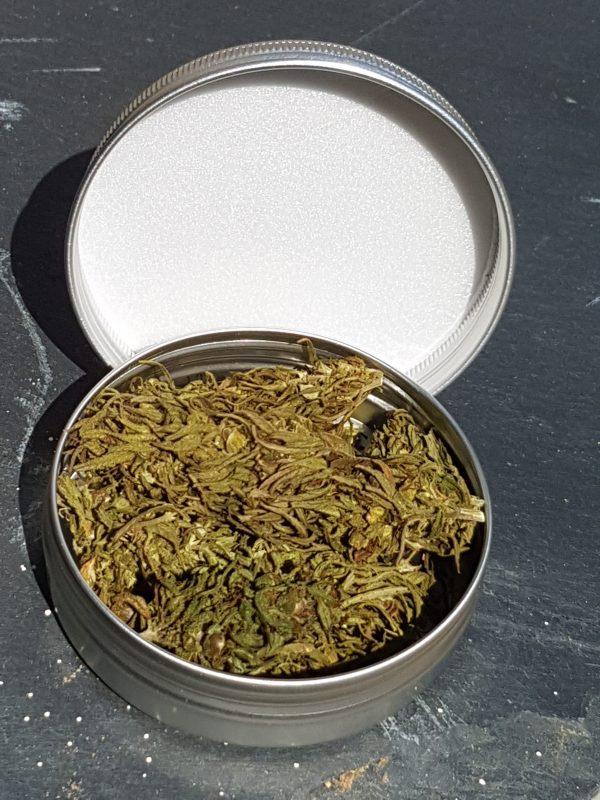 Carmagnola high grade hemp buds main