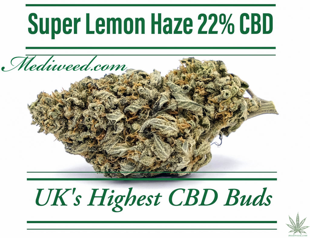 Super Lemon Haze 22% CBD Flower buds UK