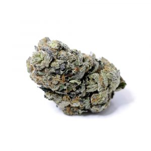 The Great White 19% CBD Flower buds UK