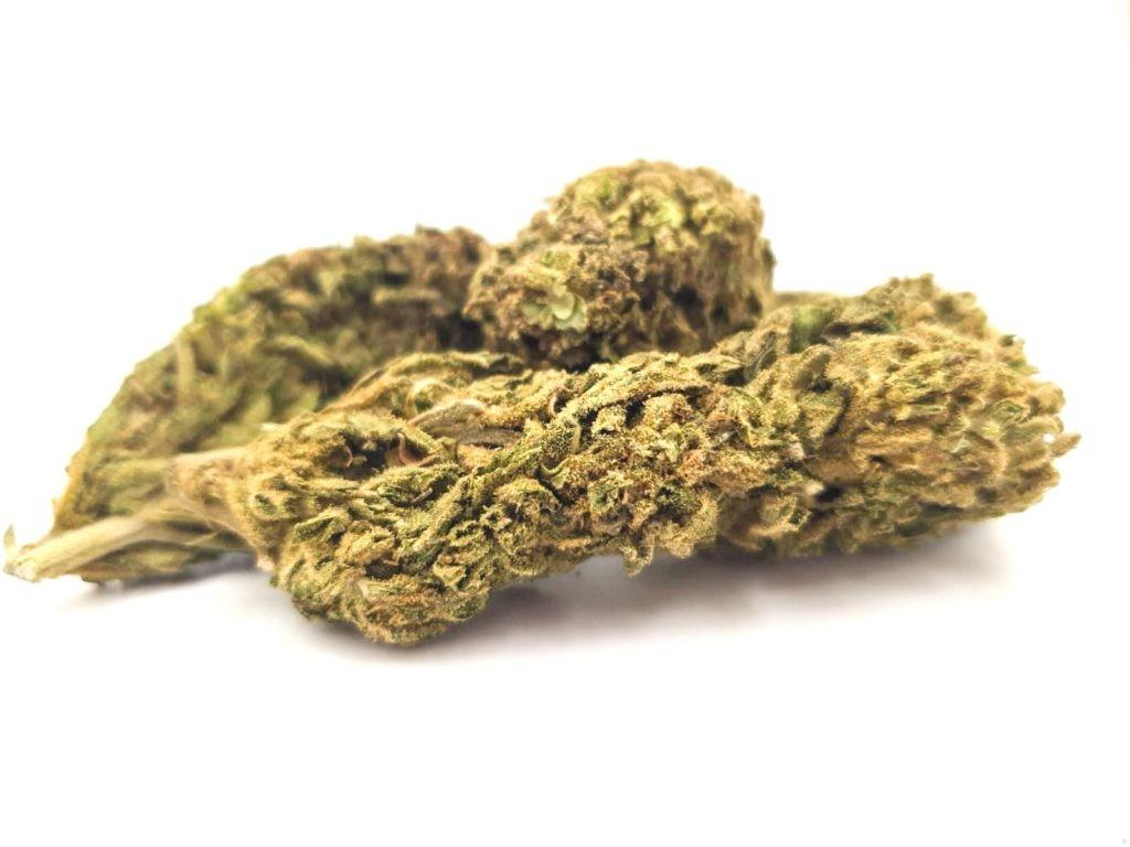 Amnesia CBD buds 16% flowers