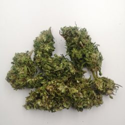Finola Hand Picked CBD Hemp Flower Buds