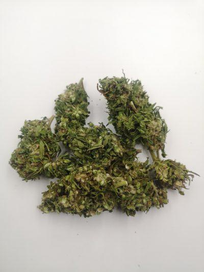 Finola premium hemp buds